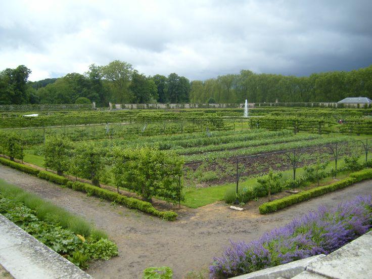 1000 images about garden espalier fruit trees on pinterest gardens trees and apples - Le potager du roi ...