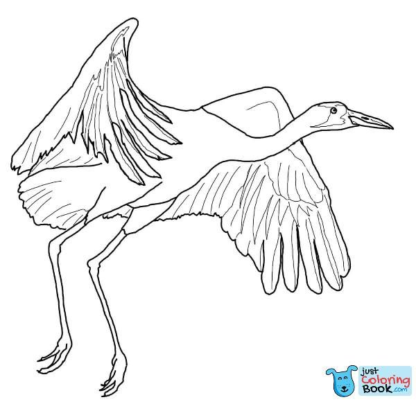 Download Two Whooping Cranes Coloring Pages Bird Coloring Pages