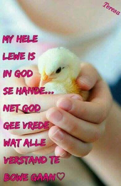 Mag Sy vrede en vreugde jou omvou vanaand.en onthou jy is God se kind.Lekker slaap