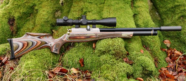 Daystate Huntsman Forester LE No: 45/100.  Just the prettiest PCP rifle.  January 2013.
