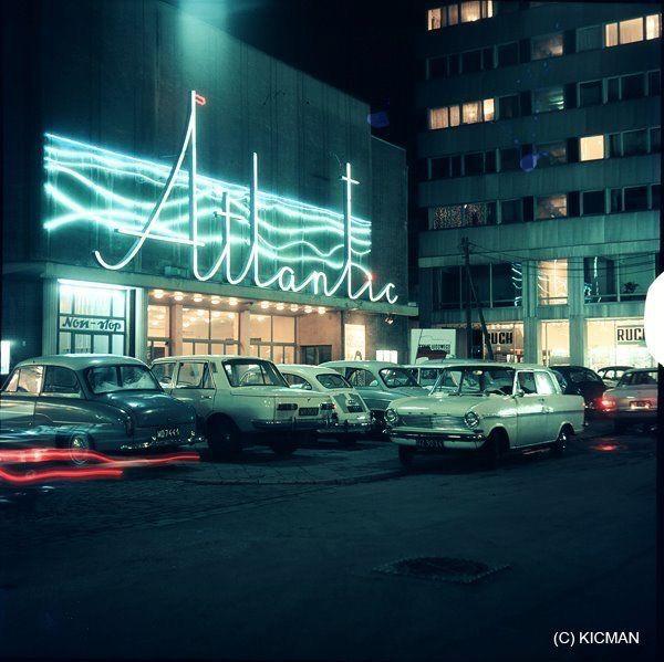 51 Best Polska Neon Images On Pinterest Poland Neon And Neon Tetra