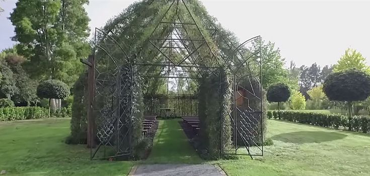 New Zealander, Barry Cox, likes Churches and decided to build one on his property.  In a four year period he cleared the land, erected the iron frame and carefully selected full grown trees to be planted as the exterior of the structure.