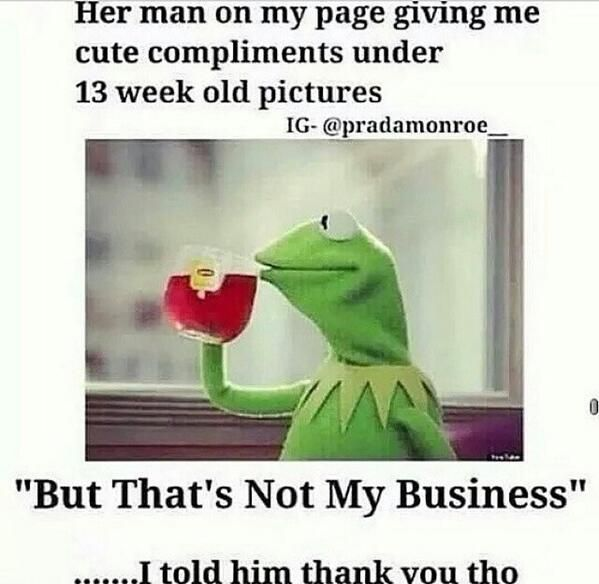 330 Best Kermit Sayings Images On Pinterest