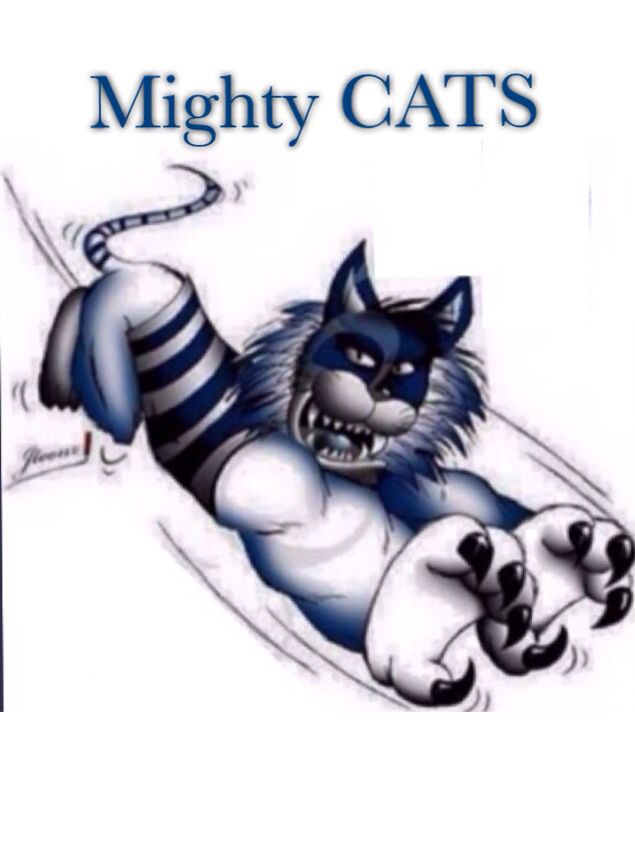 Mighty Cats