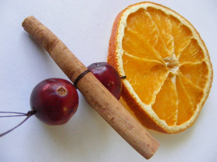 Dried orange, cranberry and cinnamon stick holiday Christmas decoration