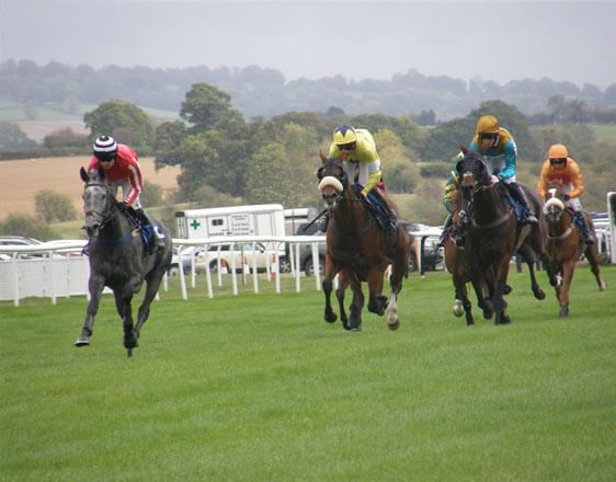 Discover details and best horse racing tips from real experts: Kempton Park, Ludlow, Wetherby, Wolverhampton. Learn how to win consistently at OddsDigger!