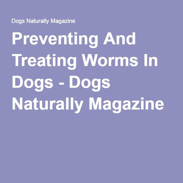 Sign up for free worming reminders at Worm Patrol; providing expert advice & FREE cat & dog worming reminders. Log in to view your pets treatment reminders!  Log on http://www.wormpatrol.co.uk/