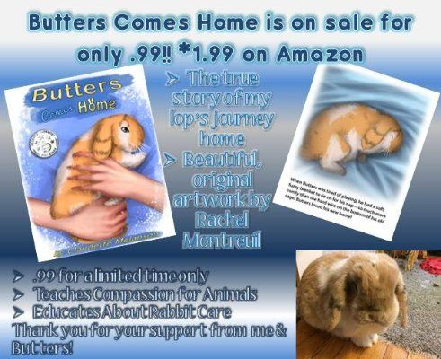 Butters Comes Home is .99 (1.99 on Amazon due to quality of file) for a short time! Readers' Favorite 5⭐️  All reviews 5 stars! Kids & adults love this story of the houserabbit who found his forever loving home after escaping the less-than-desirable conditions of a breeder. Teaches compassion for furbabies! Buy Links Amazon: http://amzn.to/25dHtSx Amazon UK: http://amzn.to/2biVNXF Amazon AU: http://amzn.to/2aOedeL Amazon IN: http://amzn.to/2aYxkSm Google Play: http://bit.ly/29aJMQR