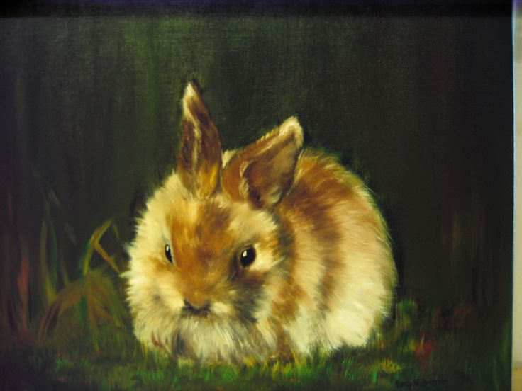 """ Bunny "" Oil painting by Nansy N. Pedersen"