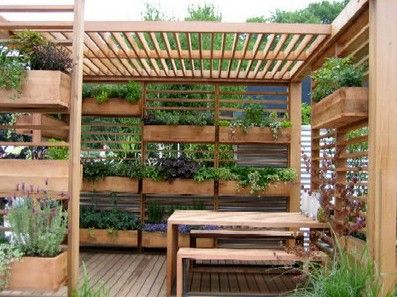 Back deck or deck (herbal garden) idea. (also nice screening device--grown vertically--from urban neighbors).