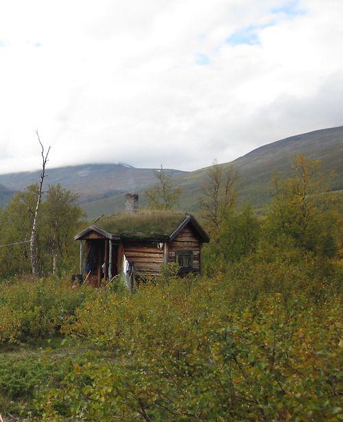 Swedish Cabin With Roof Top Garden And Retractable Outdoor: 102 Best The Scandinavian Garden Images On Pinterest