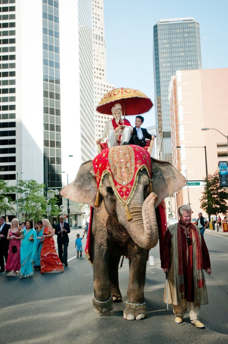 Traditional Hindu Baraat Procession | Jared Wilson Photography https://www.theknot.com/marketplace/jared-wilson-photography-westminister-co-260103 | Creative Events & Occasions https://www.theknot.com/marketplace/creative-events-and-occasions-denver-co-329651 | The Ritz-Carlton, Denver https://www.theknot.com/marketplace/the-ritzcarlton-denver-denver-co-484536