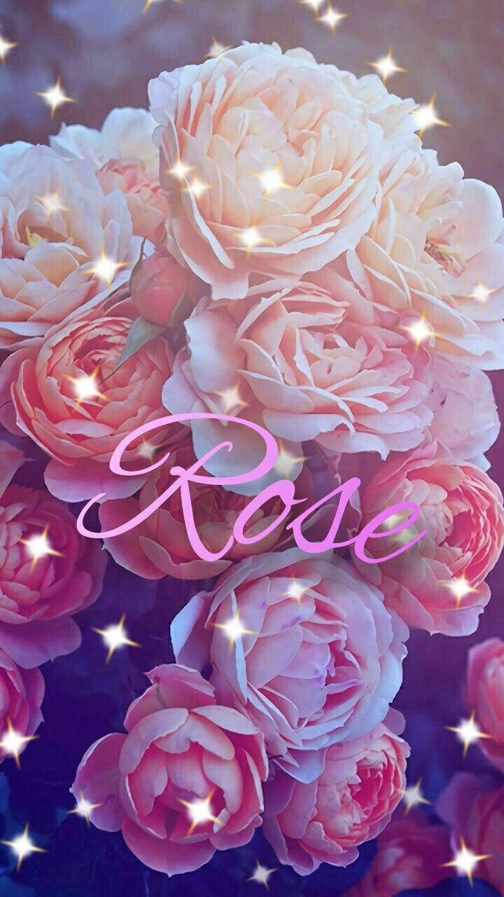Pin By Northinka On Fajne Tapety Na Telefon Flowers Rose Plants