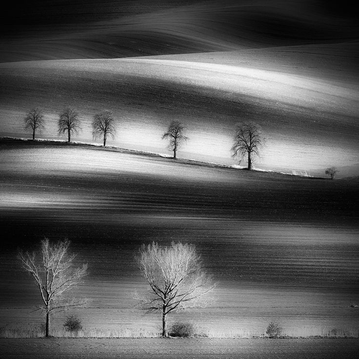 Southern Moravia, Czech Republic, Spring2012  http://www.facebook.com/Piotr.Krol.Photography