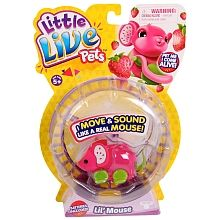 Little Live Pets - Pippeez $17.99 - Toys R Us - she already has the cage but lost her other mouse