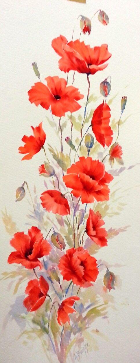 poppies. watercolour 12x32 ins