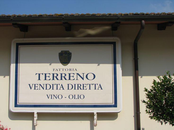 svensk vingård