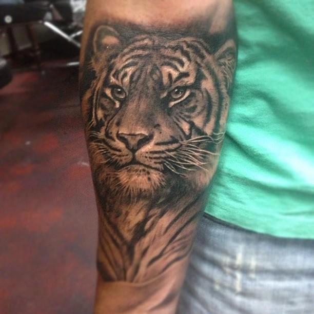 Tiger realism tattoo. Artist: Teneile Napoli.