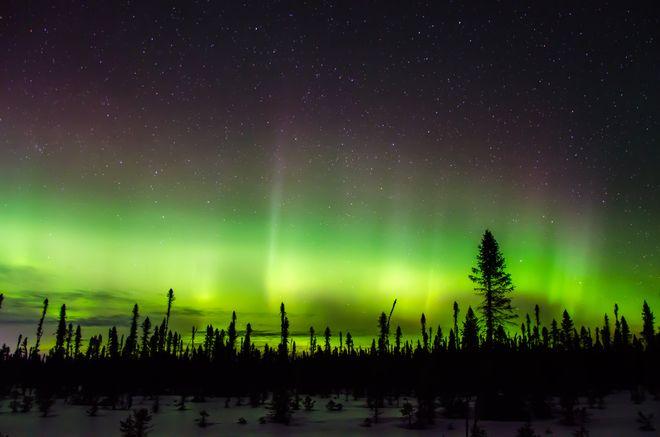 Aurora in frozen Sheep Laurel ... Cochrane, Ontario, Canada ... by Stephen Foley