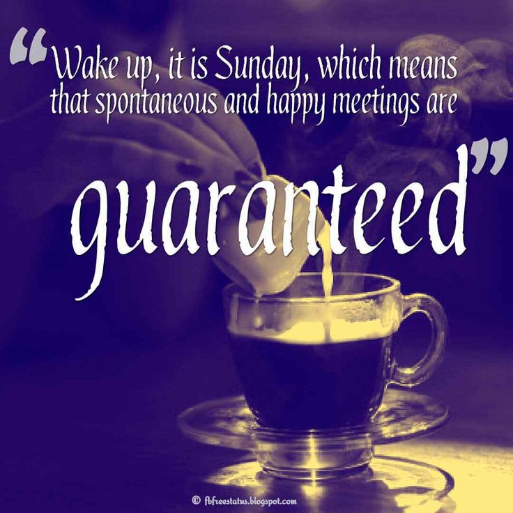 Wake up, it is Sunday, which means that spontaneous and happy meetings are guaranteed., Happy Sunday Morning Images