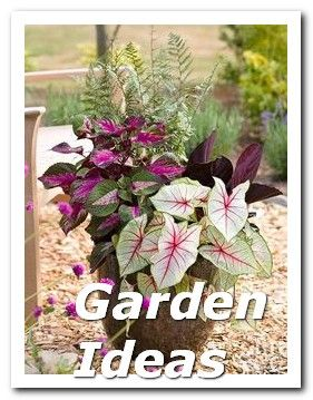 ** Container Gardens ** Use This Advice To Become A Interior Design Expert  >>> … – Container Gardens