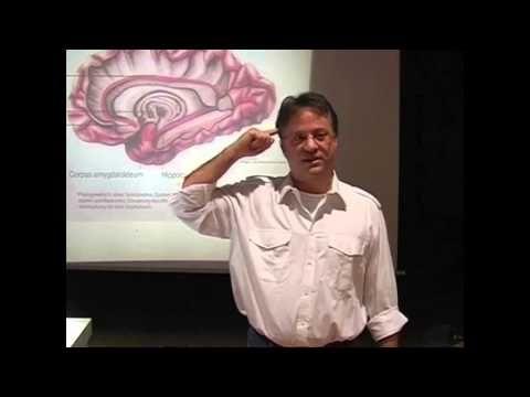Hammer Vortrag !! Angst-Krankheit, Phobien, Sucht, Angststörung , Psychologie, Lehrvideo / Doku - YouTube