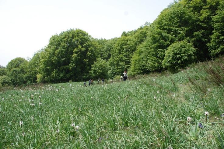 Foto racconto della 1° tappa del Welikesila On Tour in Sila #Calabria, Tirivolo verso la valle del fiume Soleo.