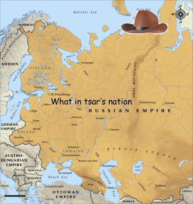 What in Tarnation: Image Gallery | Know Your Meme