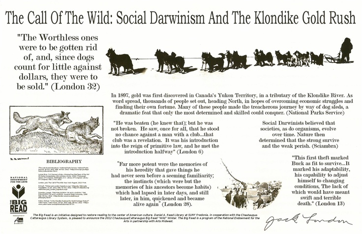 effects of social darwinism Darwin's influence on ruthless laissez faire capitalism  this study concluded that the popularity of social darwinism in the us national ideology should be.