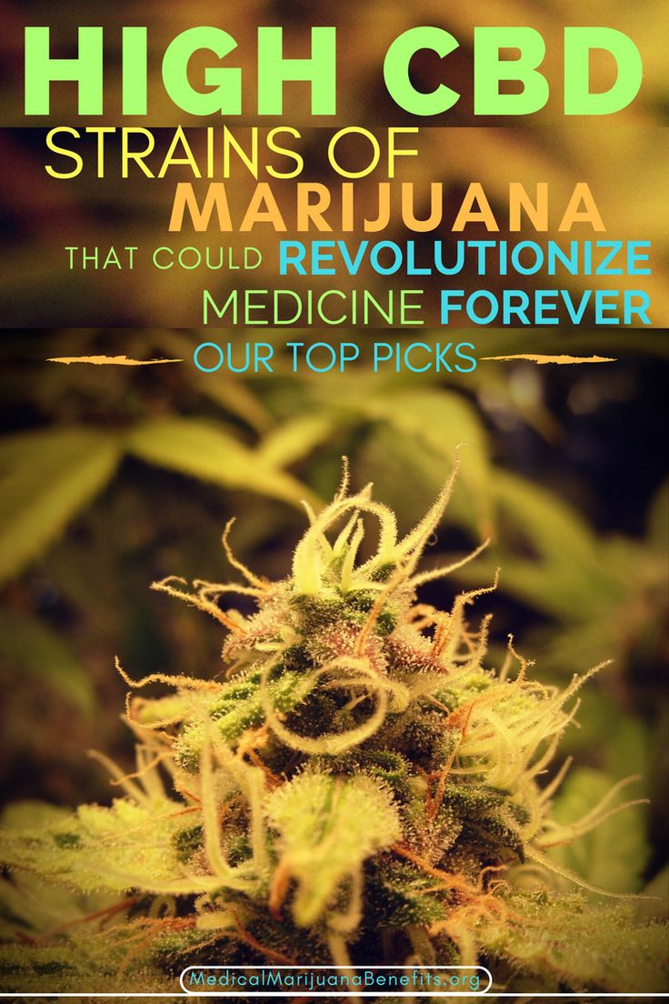 Want to get the medicinal benefits of cannabis without the 'high'? Although it seems near impossible to see a change in federal laws surrounding marijuana, it is more than possible to avoid or minimize the psychoactive effects of cannabis by researching into and selecting high CBD strains with a low THC content.  Here's our top picks - 10 High CBD strains that will reduce your pain, kill the anxiety and make you socially more comfortable (amongst other great effects!).