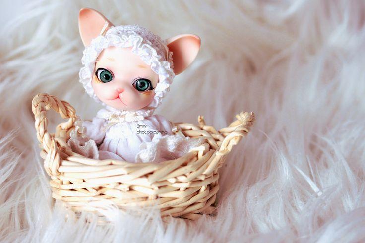 Kitten in basket ♥ | by Siniirr