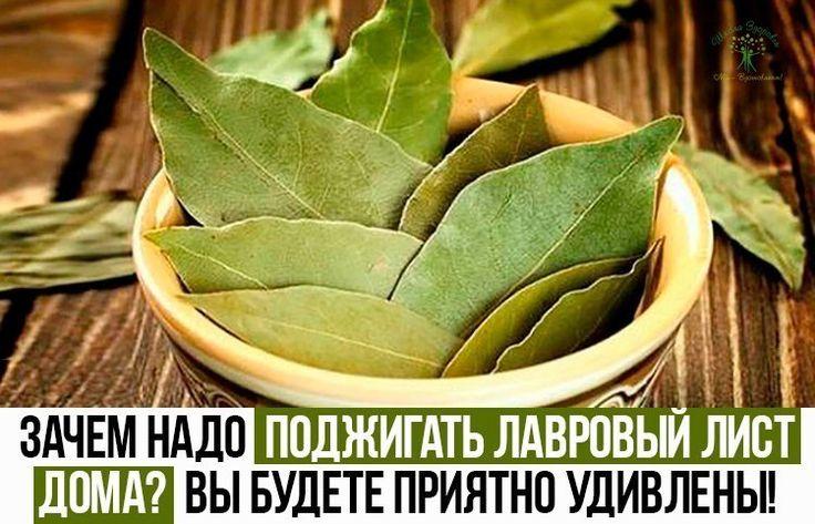 Зачем надо поджигать лавровый лист дома? Вы будете приятно удивлены!  Мы все хотим, чтобы у нас дома приятно пахло, при этом не желательно часто пользоваться искусственными освежителями.   В таком случае можно использовать способ, который знали еще Древней Греции! Более того, если проделывать данную процедуру часто, можно избавиться не только от запаха, но и предотвратить некоторые болезни и улучшить самочувствие. Доказано, что запах лаврового листа действует на организм... Продолжение…
