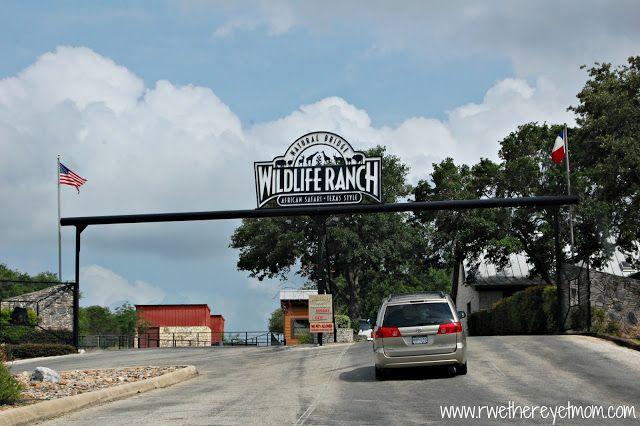 Italian Restaurants Near San Antonio Zoo