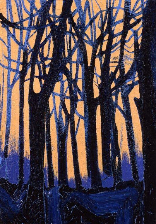 Suonano le campane nei boschi di Sant'Anna