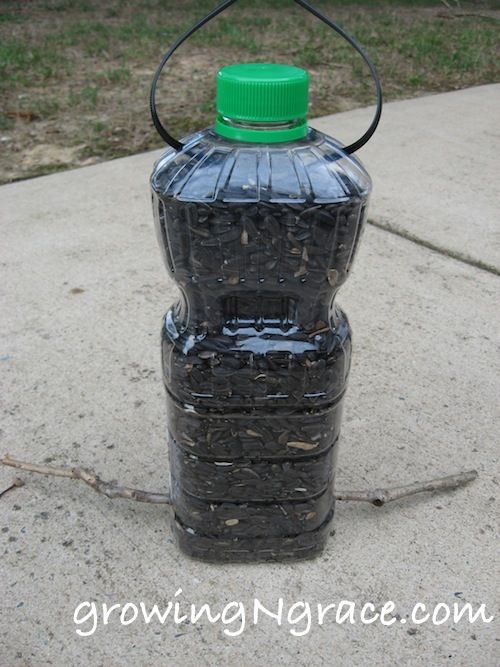 Top 25 ideas about bird feeders on pinterest jars for How to make birdhouses out of plastic bottles