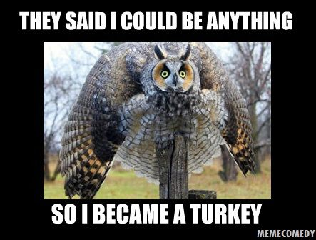 turkey meme | The Owl Turkey Meme by ~MemeComedy on deviantART