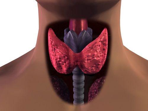 Tiroidismo: sintomi, cause, cure e rimedi Di Elisa Cappelli  Il tiroidismo è una alterazione della quantità di ormoni presenti nel sangue, dovuta ad un cattivo funzionamento della tiroide. Questa regola il metabolismo, lo sviluppo fisico e psichico e controlla l'attività del cuore. Scopriamo meglio i disturbi che possono interessarla.