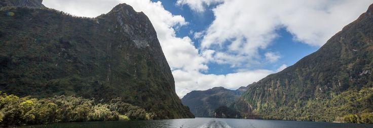 Doubtful Wilderness Cruise-5430 U