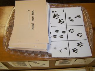 Animal tracks book  great idea! i've been wanting to make one for when we go camping for the boys