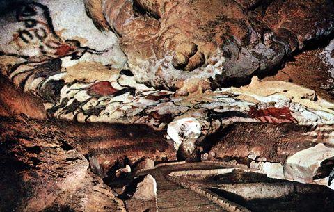 学のブログ-ラスコー 牡牛のホール