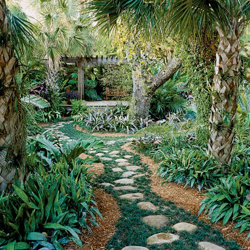 Backyard Jungle Tropical Landscapes :  stones, use black river rock, a common element in tropical landscapes