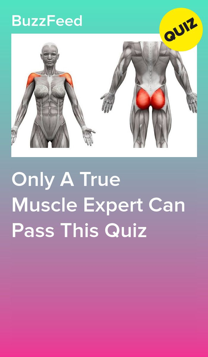 Only A True Muscle Expert Can Pass This Quiz | Medical quiz