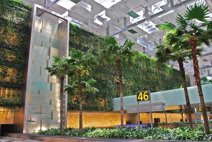 Singapore Changi Airport Terminal 3, Greenwall   Skyrise Greenery