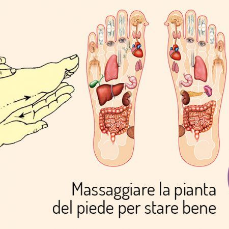 massaggiare la pianta