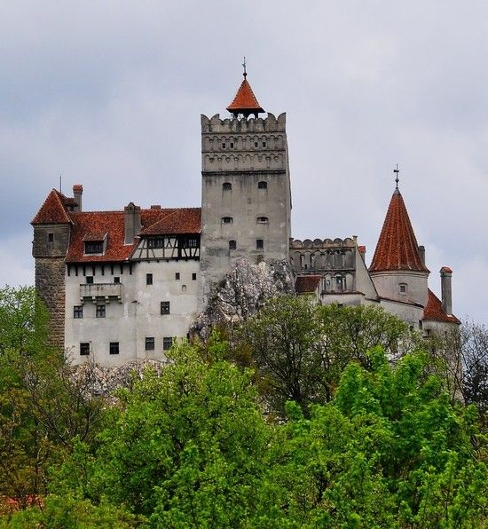 Assez 115 best Dracula / Vlad images on Pinterest | Dracula castle  GF33