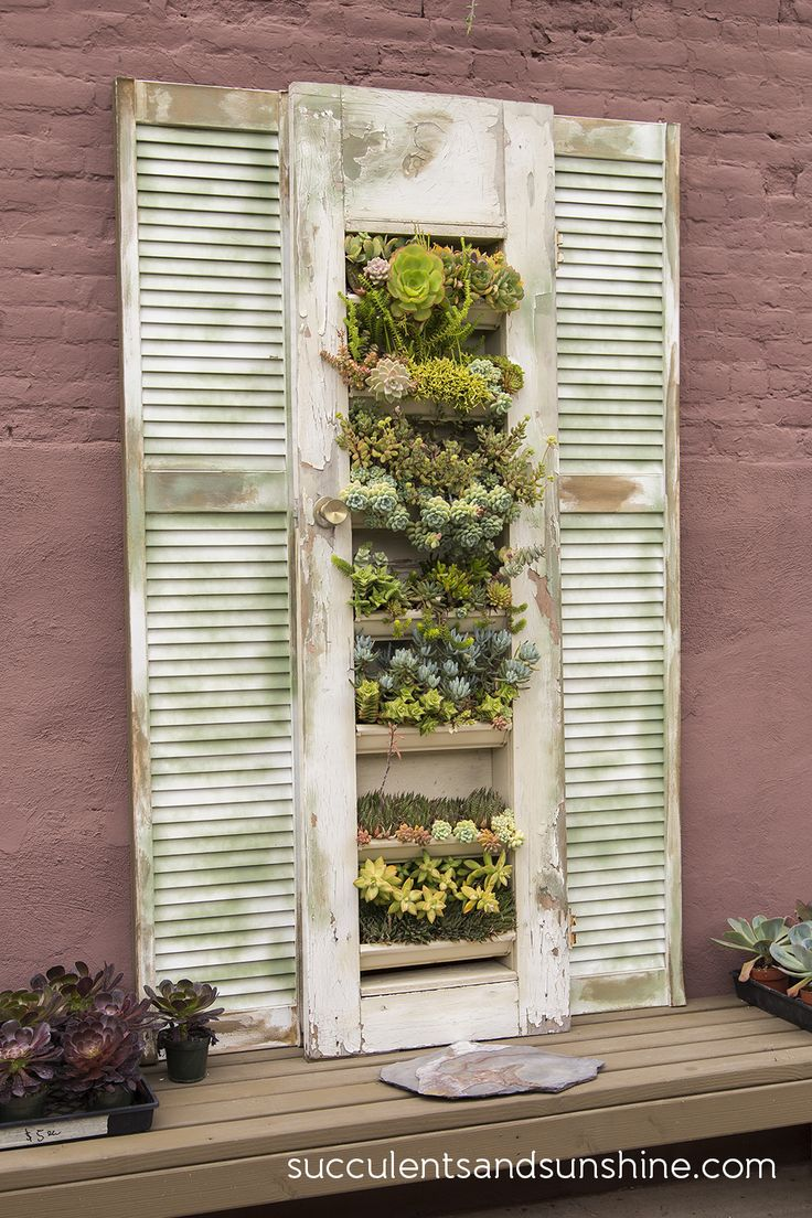Shutters with succulents at the Succulent Cafe in Oceanside - www.succulentsandsunshine.com