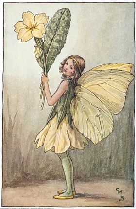 Illustration for the Primrose Fairy from Flower Fairies of the Spring.  A girl fairy stands facing left holding a bunch of primroses.  										   																										Author / Illustrator  								Cicely Mary Barker