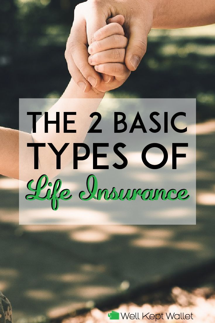 The 2 Basic Types Of Life Insurance Policies In 2020 With Images