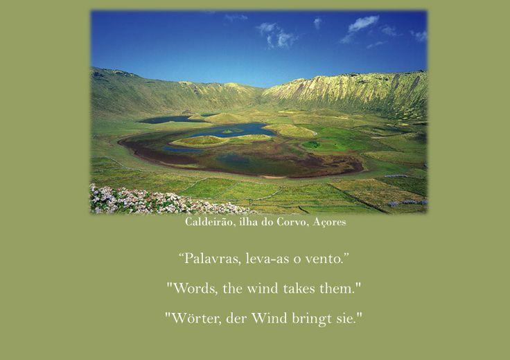 Provérbio Popular 16