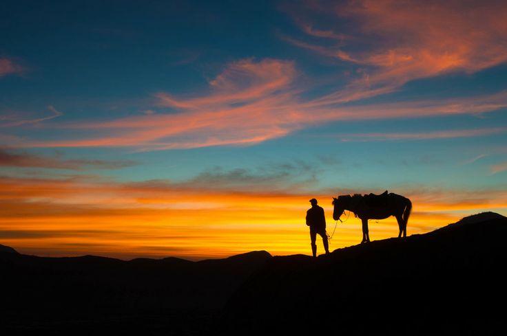 Bromo Horse Rider by Martha Suherman